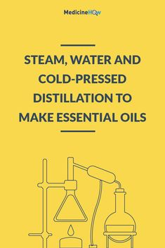 Steam, Water and Cold-Pressed Distillation to Make Essential Oils