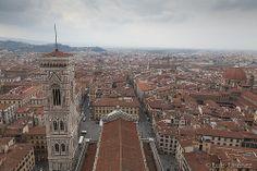 Florencia D3 (6 de 18)