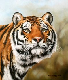 Another tiger from my Dartmoor zoo collection. Oil on canvas 10x12""