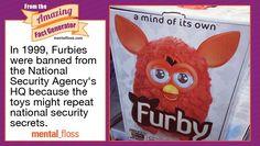 Treasonous Furby...