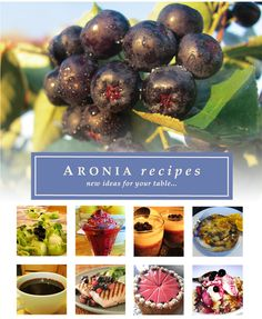 Blazerfarmz | Aronia Recipes - Grilled Cantaloupe with Honey-Ginger Aroniaberry Sauce     Ingredients:     - 6 small cantaloupes (ripe)     - find the recipe for Honey-Ginger Aroniaberry Sauce listed below.     Directions: The sauce maybe spooned over ice cream, cheesecake, and even lemon pound cake. All you need a grill pan or you can use your outdoor grill. Honey Recipes, Great Recipes, Snack Recipes, Favorite Recipes, Healthy Recipes, Aronia Berry Recipes, Clean Eating, Healthy Eating, Berry Pie