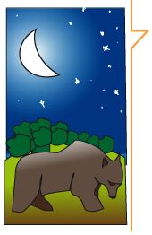 Weekend di Bearwatching ed astronomia