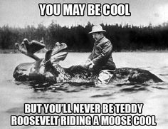 You may be cool, but you'll never be Teddy Roosevelt riding a moose cool.