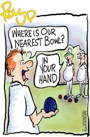 Image result for funny pictures lawn bowls Desert Rose Plant, Bowling, Cartoon Characters, Lawn, Funny Pictures, Comics, Cartoons, Birthdays, Silhouette