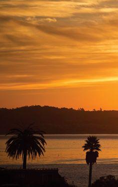 Gold glows in Santa Cruz at the Roxy shoot