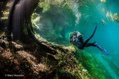 Chaque printemps, ce parc aux pieds des montagnes autrichiennes d' Hochschwab disparaît sous l'eau...Ces photos complètement surréalistes vont vous faire rêver !