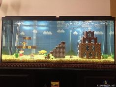Awesome fish tank!!!!! <3