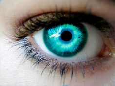 Nina's eyes. - Imagine a pair of these on Holland Roden and you get Nina Elber.