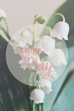 Hello, May - Morgane LB