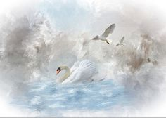 A Swan's Dream Greeting Card by Mary Timman