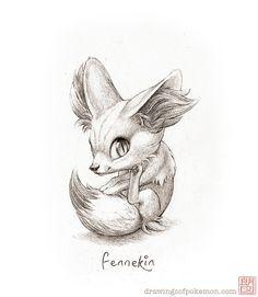 Fennekin   Drawings of Pokémon