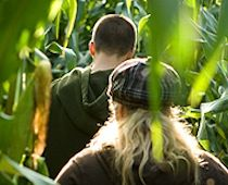 Corn Mazes with the Kids in Fairfield County, CT www.ct.mommypoppins.com