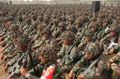 indonesian military | ... Militer INdonesia - Indonesian Military Power Pictures Gallery