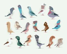 PIGEON GAME by James Gilleard, via Behance