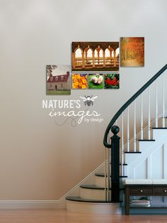 Mount Vernon Series  Autumn Image Set  by NatureImagesByDesign, $220.00