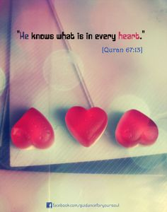 """""""He knows what is in every heart.""""    [Quran 67:13]"""