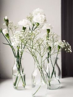 Simple babies breath and mini carnation bud vase Wedding Centerpieces, Wedding Table, Wedding Decorations, Table Decorations, White Flowers, Beautiful Flowers, Floral Wedding, Wedding Flowers, Deco Floral