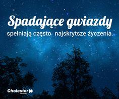 Obserwujcie tej nocy niebo. Kiedy ostatnio widzieliście spadające gwiazdę? #gwiazdy #marzenia #senecje #złotemyśli #cytaty