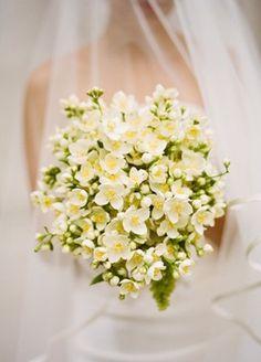 bouquets, classic, green, Jasmine, white, yellow, Spring, elegant, bouquet, flowers, fresh, lemon, rosemary, San Francisco , California