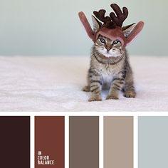 paleta-de-colores-2503