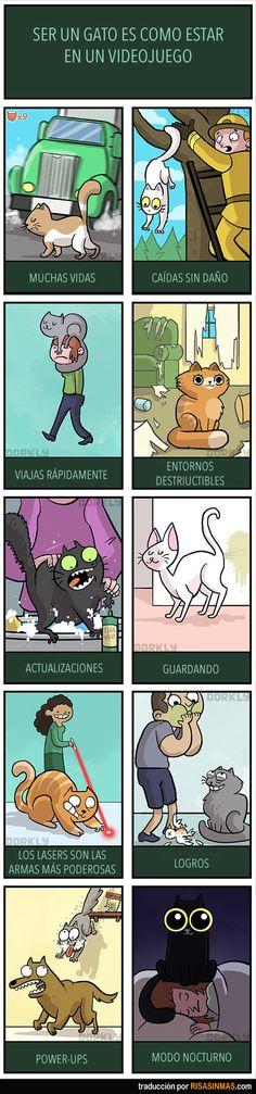 Ser un gato es como estar en un videojuego.