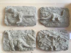 dinosaurussen afdrukken in gips