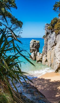 New Zealand has endless beaches but this may be the smallest beach in the country - found in the Abel Tasman National Park