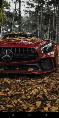 Ferrari red Mercedes-AMG GT in the forest. High-end luxury sport cars Luxury Sports Cars, Fast Sports Cars, Top Luxury Cars, Sport Cars, Exotic Sports Cars, Fast Cars, Exotic Cars, Bmw Autos, Autos Toyota
