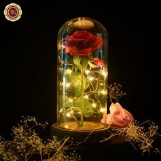 WR Beauty And The Beast Enchanted Rose Glass Dome LED Lighted Wedding Decor Gift - Glass Decorating - Ideas of Glass Decorating - WR Beauty And The Beast Enchanted Rose Glass Dome LED Lighted Wedding Decor Gift Price : Quince Decorations, Quinceanera Decorations, Beauty And The Beast Wedding Theme, Wedding Beauty, Beauty And The Beast Flower, Red Rose Wedding, Enchanted Rose, Costume Rose, Wedding Centerpieces