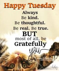 Tuesday Morning Quotes Good Morning Happy Tuesday  Good Morning's & Weekday Quote's