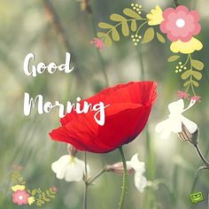 Good morning beautiful, I hope you slept well, have a great day.. I love you Always AND Forever