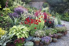 Using pots in borders to add interest to display Colorful Garden, Tropical Garden, Gravel Garden, Garden Plants, Beautiful Flowers Garden, Beautiful Gardens, Container Plants, Container Gardening, Garden Inspiration