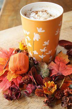 Autumn Tea, Autumn Leaves, Autumn Cozy, Autumn Harvest, Fall Drinks, Latte Recipe, Pumpkin Spice Latte, Autumn Inspiration, Yummy Drinks