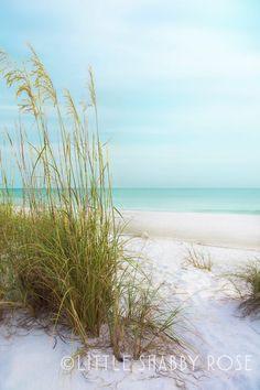 Anna Maria Island Sand Dunes Beach Photography - Coastal Inspired Home Decor - Pastel Aqua Blue Florida Wall Art - Gulf of Mexico Beach Anna Maria Island, Beach Photography, Image Photography, Florida Beaches, Destin Florida, Beach Print, Beach Scenes, Beach Pictures, Large Prints