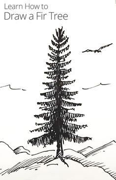 In this lesson, children's author and illustrator Shoo Rayner demonstrates how to draw a realistic fir tree with pencil and ink.