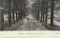 Weg naar den Vrijenberg