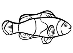Printable Pictures of Ocean Fish | Free Printable Fish Coloring Pages For Kids