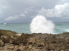 Barbados: North Point / The Spout