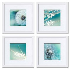 Dandelion photography - fine art photography nature print dandelions botanical - by mylittlepixels on madeit