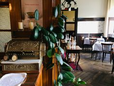Hidden Original: Viennese inn Zum Friedensrichter in Leopoldstadt Vienna Restaurant, Oversized Mirror, Restaurants, The Originals, Furniture, Home Decor, Decoration Home, Room Decor, Restaurant