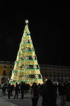 Outdoor Christmas, Christmas Trees, Christmas Holidays, Christmas Ornaments, Flower Food, Christmas Aesthetic, Beautiful Christmas, Christmas Lights, Susan Sontag