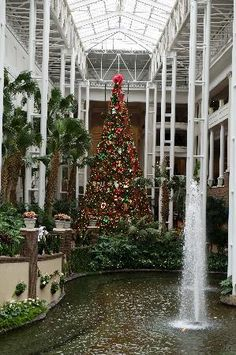 Opryland Hotel, Nashville at Christmas!!! Gorgeous!!!