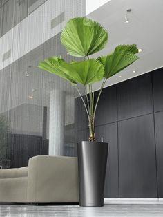 Fejka artificial potted plant ikea lifelike for Ikea fleurs artificielles