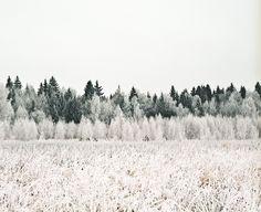serg by Batrakov, via Flickr