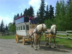 People Mover Double Decker Horse Carriage Pleasure driving carriage  Red Deer, Alberta