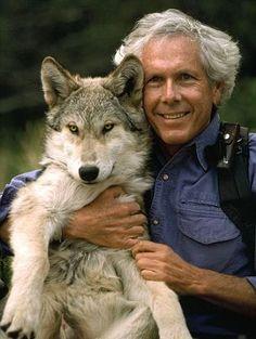 Шесть лет жизни с волками - Хорошие новости про животных