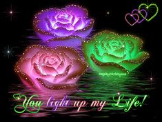 gif anime divers - Page 4 Beautiful Gif, Beautiful Roses, Beautiful Flowers, Colorful Flowers, Glowing Flowers, Flowers Pics, Neon Flowers, Pretty Roses, Romantic Roses