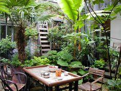 """Résultat de recherche d'images pour """"jardin tropical meuliere"""""""