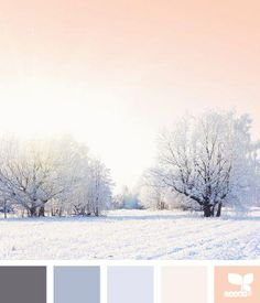 Pure & Delightful Winter Pastels