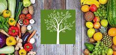 Di Stagione - l'app per conoscere frutta verdura e pesce di stagione! Di Stagione è lapplicazione per Android e iPhone che vi aiuta a conoscere la frutta la verdura e i android iphone frutta verdura ricette